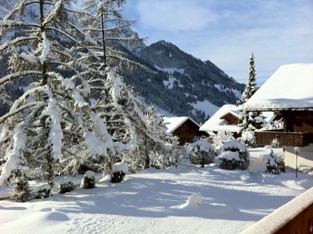 Rougemont bei Gstaad - für Winter- und Sommersport (Golf) 13313581