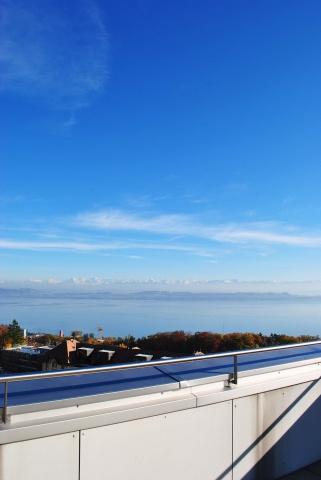 Appartement de haut standing avec vue magnifique sur le lac 11794980