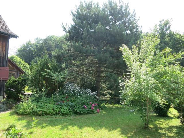 Möchten Sie Ihre Gartenträume realisieren? Gartenliebhaber g 11401097