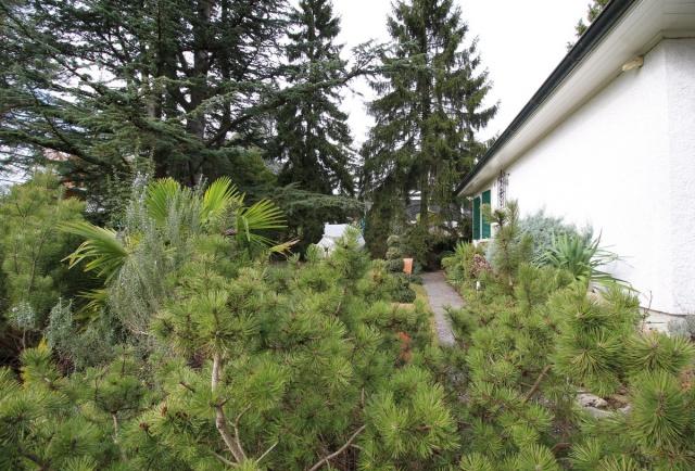 Villa individuelle de plain-pied sur une belle parcelle arbo 13790295