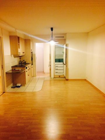ruhige 2.Zimmerwohnung in Otelfingen 12032085