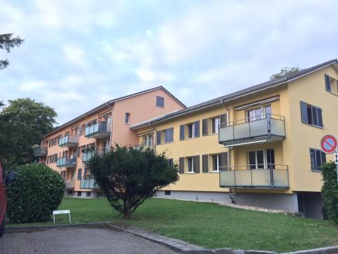 1 Zi Dachwhg in Winterthur am Stadtrand / Grün