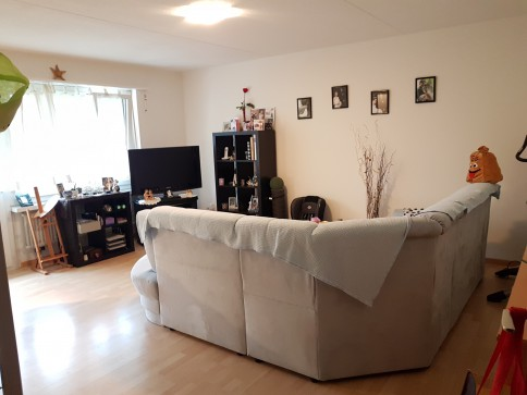 3- Zimmer Wohnung in Reichenburg