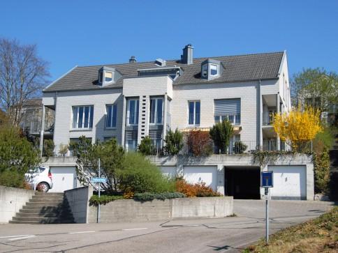 3.5 Zi Wohnung 100m2 - Einfamilienhausfeeling mit Weit- und Rheinsicht