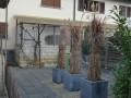 4.5 Zimmer Reihen-Einfamilienhaus mit Autoabstellplatz