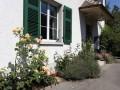 4-Zi.-Wohnung, Länggasse, Altbau, ruhig, Aussicht