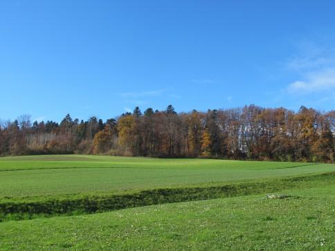 Beau terrains à Villars Epeney