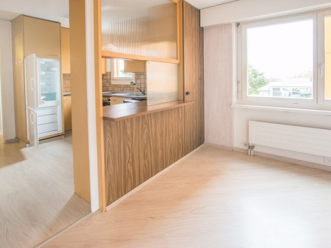 Bright, spacious apartment -10 min drive to Zurich center