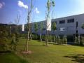 Duplex-Wohnung im Grünen