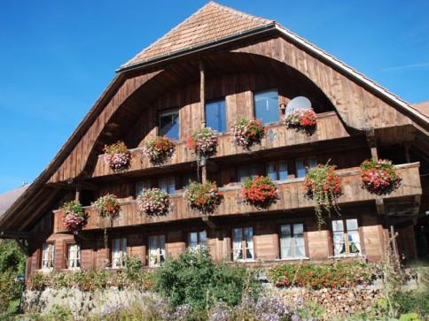 Grosses original Berner Bauernhaus mit Spycher, Weide und Hofstatt