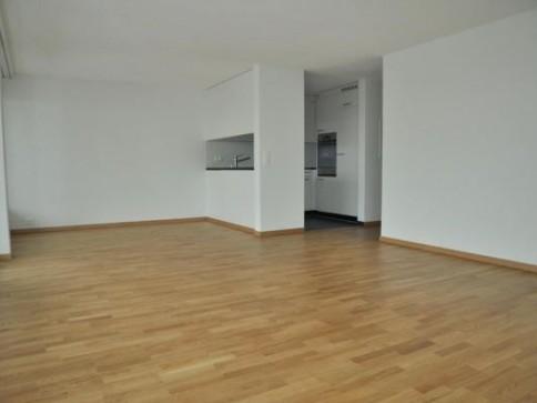 moderne 4 1/2-Zimmerwohnung im Pestalozzipark!