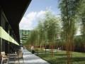 Neubau in Schlieren im wunderschönen Bambusgarten