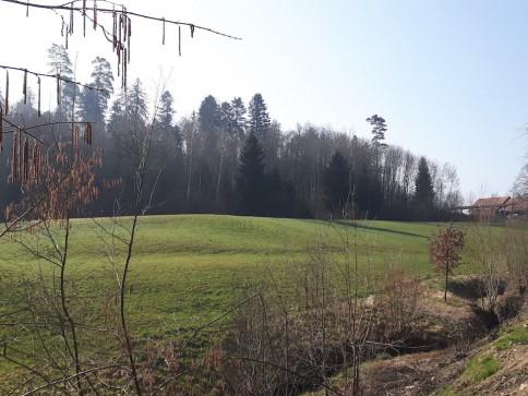 Neubau von 4 Einfamilienhäuser an der Eichwaldstrasse in Büren a. Aare