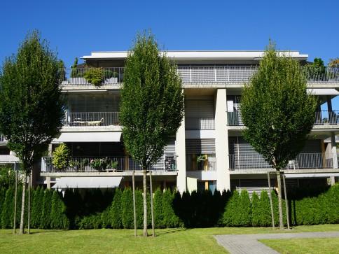 neuwertige Gartenwohnung in modernem Wohnquartier