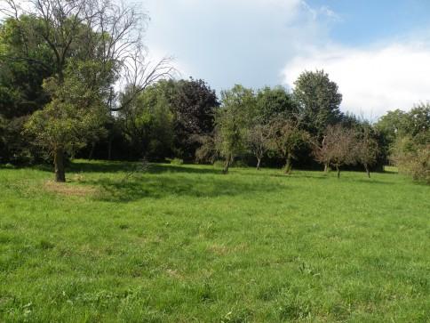 Parcelle à bâtir en zone village - Bauland in Dorfkernzone