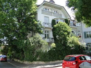 Ruhige Jugendstilwohnung eine Oase nähe Basel Unispital