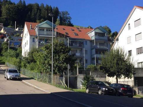 schöne renovierte 4.5-Zimmer-Wohnung