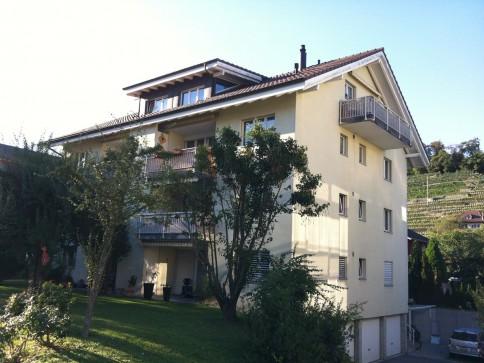 3 1/2 Zi Wohnung mit grossem Balkon und Reduit