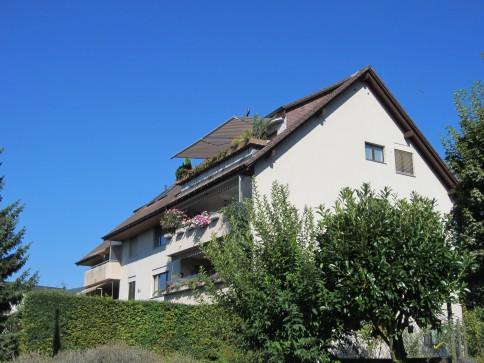 3.5-Zimmer-Dachwohnung mit Alpensicht
