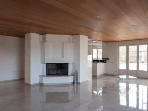 4.5-Z. Attika- und 2.5-Z. Atelier-Wohnung mit Terrasse