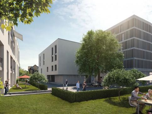 4.5-Zimmerwohnungen verschiedenster Grössen zentral in Reinach