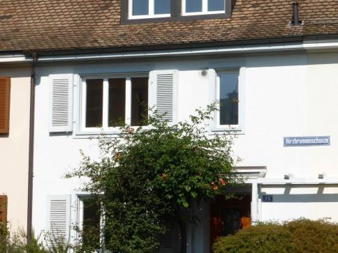 Altbau-Stadthaus mit Cheminée im Hirzbrunnenquartier