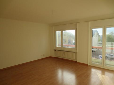 Bel et lumineux appartement rénové - très bon emplacement