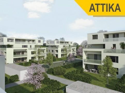 BLUMENAU -im Park- grosszügige 4,5 Zi-Attikawohnung   Baustart erfolgt