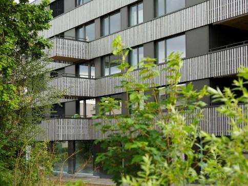 ERSTVERMIETUNG moderner Wohnungen mit Minergie-Standard