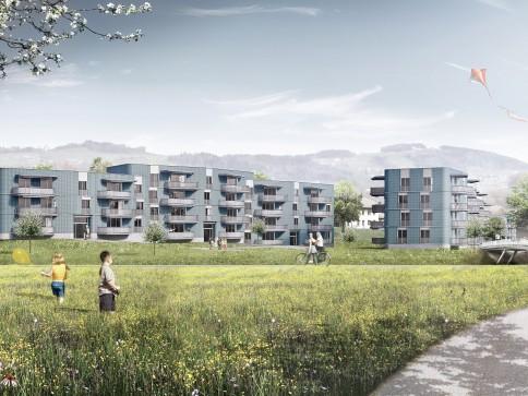 "Erstvermietung ""Sturzenegg"" Bezug ab ca. Juli bis November 2017"