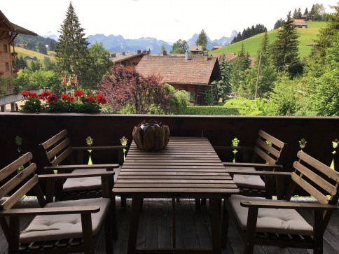 Fantastic apartment near Gstaad