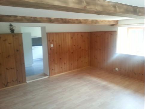 Fideris, neu-renovierte 1 1/2 Zimmer-Wohnung