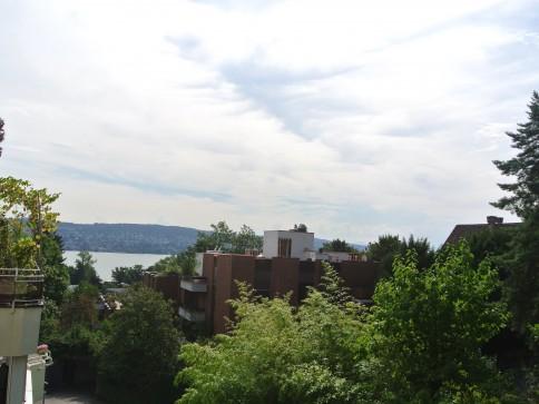 grosszügige und helle Wohnung mit Aussicht über den Zürichsee
