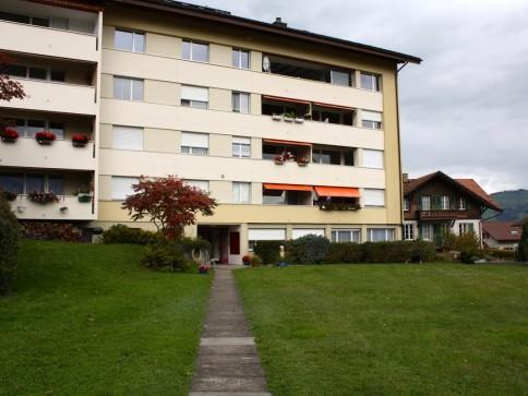 Helle, neu renovierte 3 1/2-Zimmerwohnung
