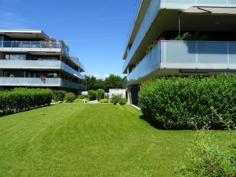 Moderne 3,5-Zi Attikawohnung mit grosser Terrasse