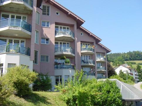 moderne, helle Wohnung mit Alpsteinblick