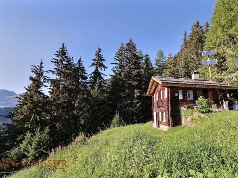 P'ti Loup - Charmant mayen rénové en 2010 sur les hauts de Sarreyer