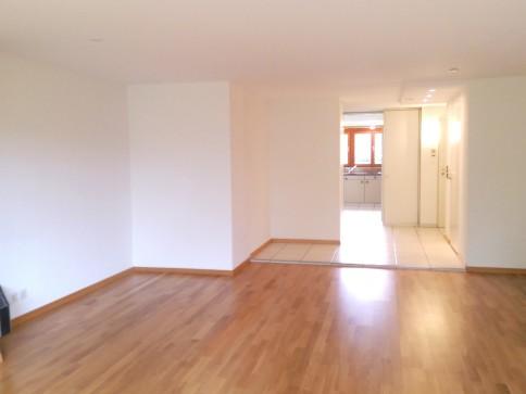 Schöne 4.5 Zimmerwohnung mit Cheminée, Balkon und Ausblick ins Grüne