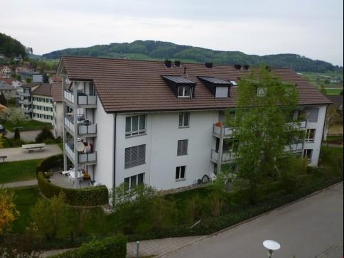 schöne, grosszügige 5 1/2 Zimmer-Wohnung im Grünen