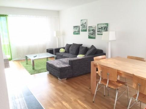 schöne, helle schöne 4.5 Zimmer Wohnung mit Cheminee zu verkaufen