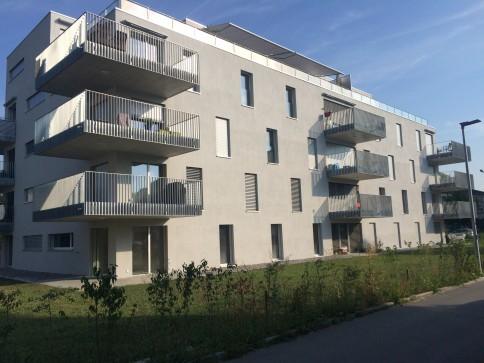 Stadtgrenze Aarau beim Kantonsspital - Gartenwohnung