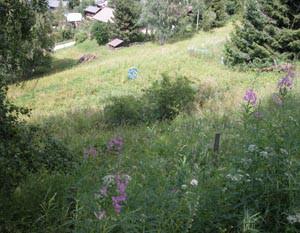 Terrain au lieu-dit Avouintzet