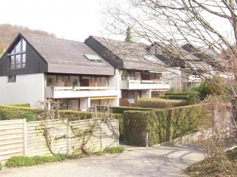 7 1/2-Zimmer-Reiheneinfamilienhaus mit Blick ins Grüne