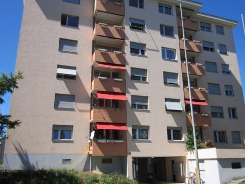 Appartement à 3.5 entouré de vert