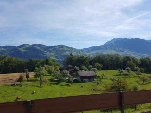 Aussicht auf Thunersee, Berge, Natur, ruhige Lage, nähe Bushaltestelle
