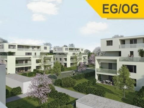 BLUMENAU -im Park- grosszügige 3,5 Zi-Wohnung |Baustart erfolgt