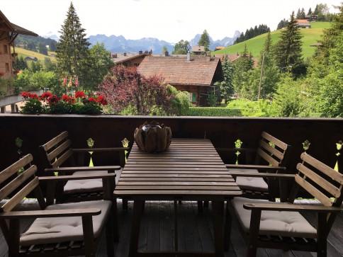 Fantastic apartment near Gstaad