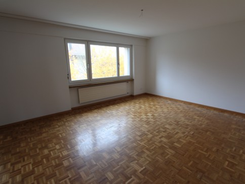 Gemütliche 4.5 Zimmerwohnung an sonniger Hanglage mit Aussicht!