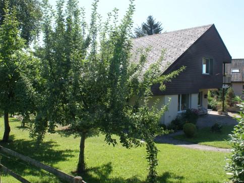 Geräumiges 6-Zi-Haus freistehend an ruhiger Wohnlage in Zürich