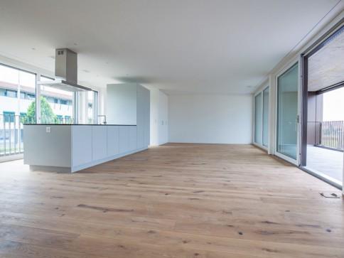 Neu erstelltes modernes und grosszügiges Eckhaus